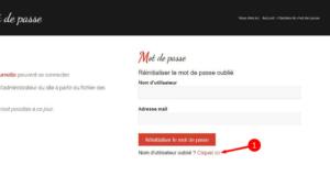 2. Pour récupérer votre nom d'utilisateur, cliquez sur le lien rouge en bas du formulaire