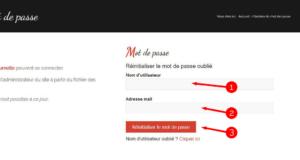 """5. Revenez au menu """"Mot de passe oublié"""" (voir étape 1) et saisissez votre nom d'utilisateur ainsi que votre adresse mail avant de cliquer sur le bouton rouge"""